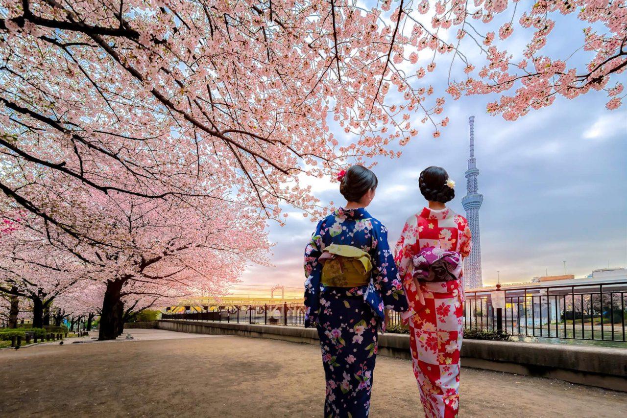 https://travelicious.bold-themes.com/main-demo/wp-content/uploads/sites/2/2018/09/destination-tokyo-03-1280x854.jpg